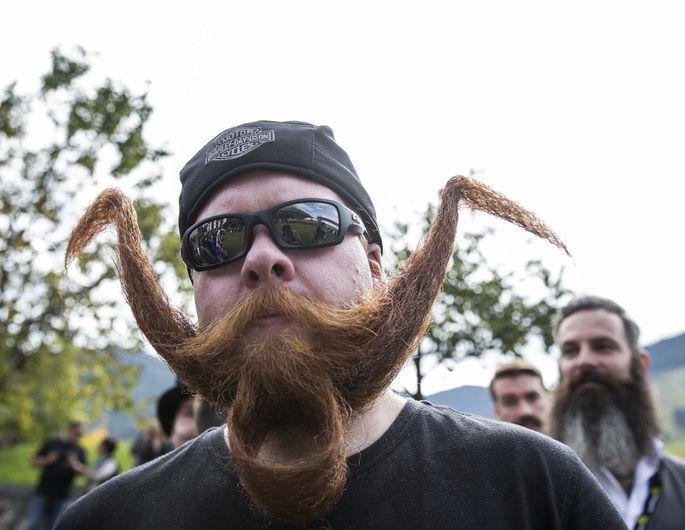 brada3